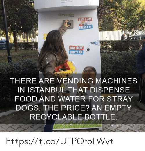 stray dogs: PuCEdoN  COPE ATMA  BURAYA AT  BOSA DOKME  BURAYA DOK  THERE ARE VENDING MACHINES  IN ISTANBUL THAT DISPENSE  FOOD AND WATER FOR STRAY  DOGS. THE PRICE? AN EMPTY  RECYCLABLE BOTTLE https://t.co/UTPOroLWvt