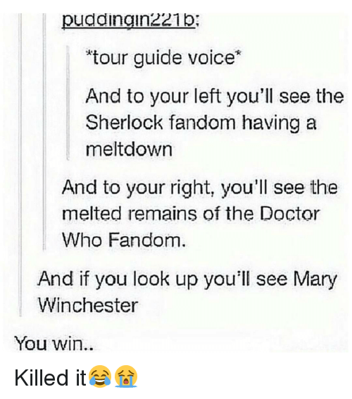 "Memes, 🤖, and The Doctors: pudaingin221p  ""tour guide voice  And to your left you'll see the  Sherlock fandom having a  meltdown  And to your right, you'll see the  melted remains of the Doctor  Who Fandom.  And if you look up you'll see Mary  Winchester  You win Killed it😂😭"