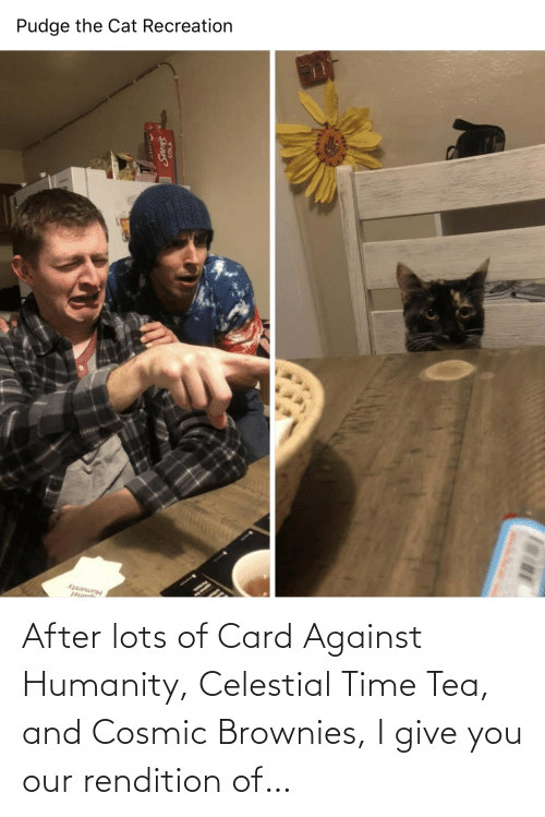 celestial: Pudge the Cat Recreation  Humanity After lots of Card Against Humanity, Celestial Time Tea, and Cosmic Brownies, I give you our rendition of…