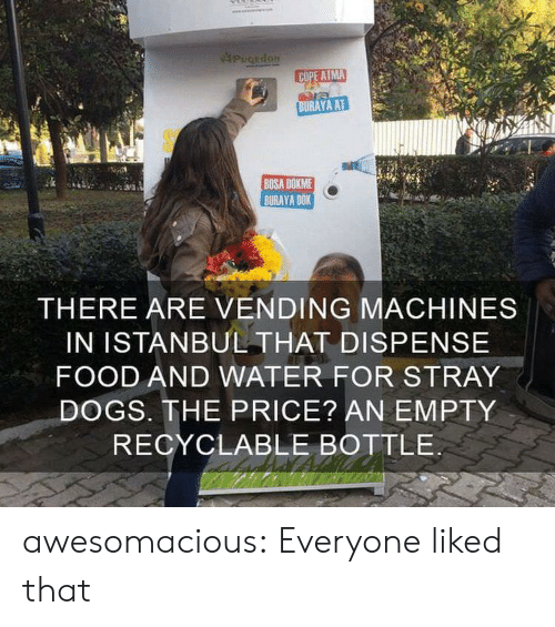 stray dogs: PugEdoN  COPE ATMA  BURAYA AT  BOSA DOKME  BURAYA DOK  THERE ARE VENDING MACHINES  IN ISTANBUL THAT DISPENSE  FOOD AND WATER FOR STRAY  DOGS. THE PRICE? AN EMPTY  RECYCLABLE BOTTLE awesomacious:  Everyone liked that