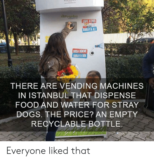 stray dogs: PugEdoN  COPE ATMA  BURAYA AT  BOSA DOKME  BURAYA DOK  THERE ARE VENDING MACHINES  IN ISTANBUL THAT DISPENSE  FOOD AND WATER FOR STRAY  DOGS. THE PRICE? AN EMPTY  RECYCLABLE BOTTLE Everyone liked that