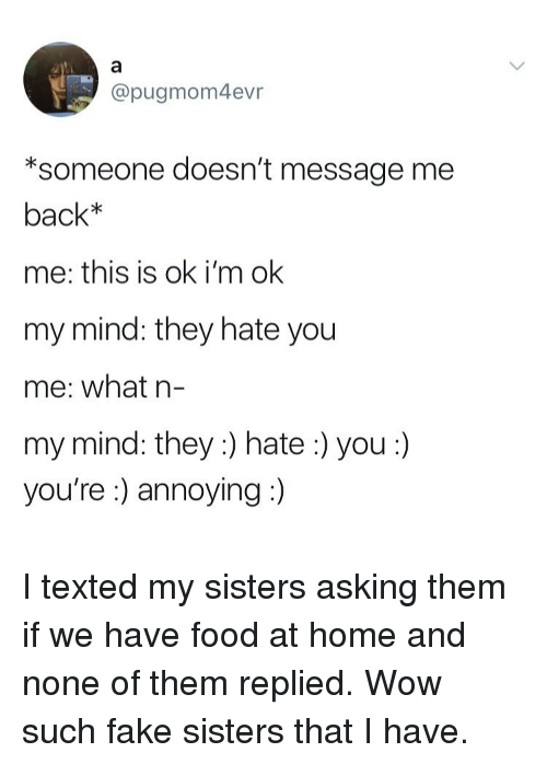 Fake, Food, and Wow: @pugmom4evr  *someone doesn't message me  back*  me: this is ok i'm ok  my mind: they hate you  me: what n-  my mind: they :) hate:) you:)  you're :) annoying I texted my sisters asking them if we have food at home and none of them replied. Wow such fake sisters that I have.