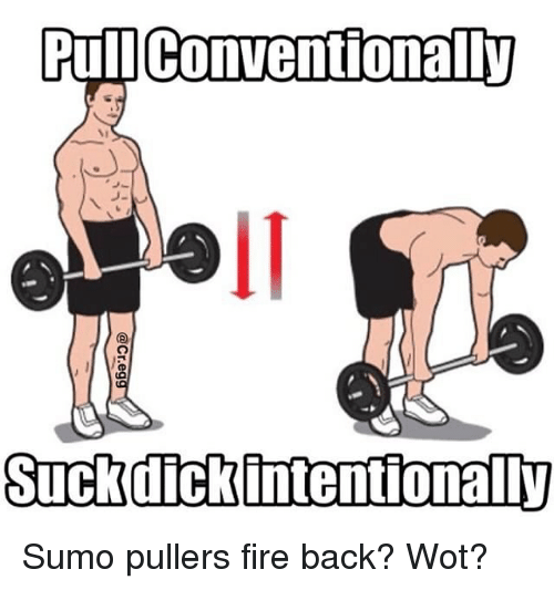 Fire, Memes, and Back: Pull Conventionally  oll  Suckdickintentionall)y Sumo pullers fire back? Wot?