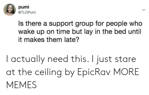 Actually Need: pumi  @TLOPumi  Is there a support group for people who  wake up on time but lay in the bed until  it makes them late? I actually need this. I just stare at the ceiling by EpicRav MORE MEMES