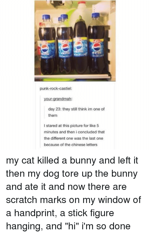 "Memes, Chinese, and Scratch: punk-rock-castiel:  your-grandmah:  day 23: they still think im one of  them  I stared at this picture for like 5  minutes and then i concluded that  the different one was the last one  because of the chinese letters my cat killed a bunny and left it then my dog tore up the bunny and ate it and now there are scratch marks on my window of a handprint, a stick figure hanging, and ""hi"" i'm so done"