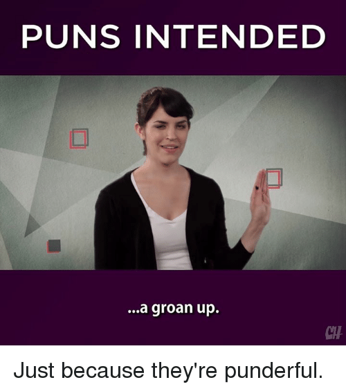 Puns Intended: PUNS INTENDED  ...a groan up. Just because they're punderful.