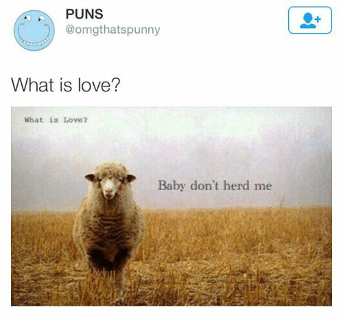 Punnies: PUNS  @omgt hats punny  What is love?  What is Love?  Baby don't herd me
