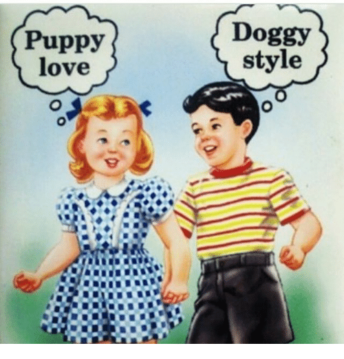 Love, Memes, and Puppy: Puppy  love  Doggy  style
