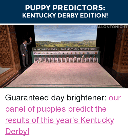 """kentucky derby: PUPPY PREDICTORS:  KENTUCKY DERBY EDITION!   FALLONTONIGHT  PUPPY PREDICTORS 2015 KENTUCKY DERBY EDITION <p>Guaranteed day brightener: <a href=""""https://www.youtube.com/watch?v=jMsIPmaAILo&amp;index=3&amp;list=UU8-Th83bH_thdKZDJCrn88g"""" target=""""_blank"""">our panel of puppies predict the results of this year's Kentucky Derby!</a></p>"""