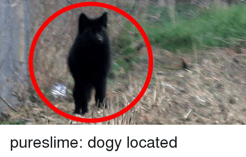 Tumblr, Blog, and Http: pureslime: dogy located