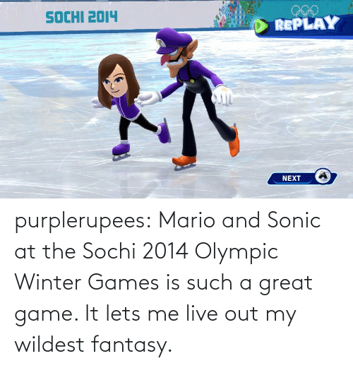 Winter: purplerupees: Mario and Sonic at the Sochi 2014 Olympic Winter  Games is such a great game. It lets me live out my wildest fantasy.