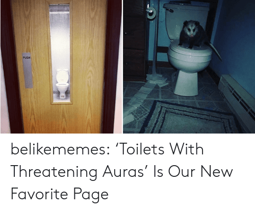 toilets: PUSH belikememes: 'Toilets With Threatening Auras' Is Our New Favorite Page