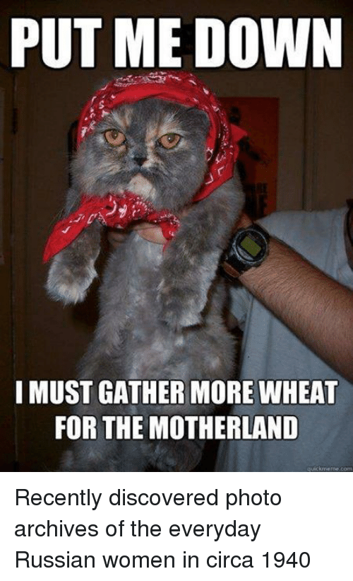 Russian Women: PUT ME DOWN  ty  I MUST GATHER MORE WHEAT  FOR THE MOTHERLAND  quicumeme.com