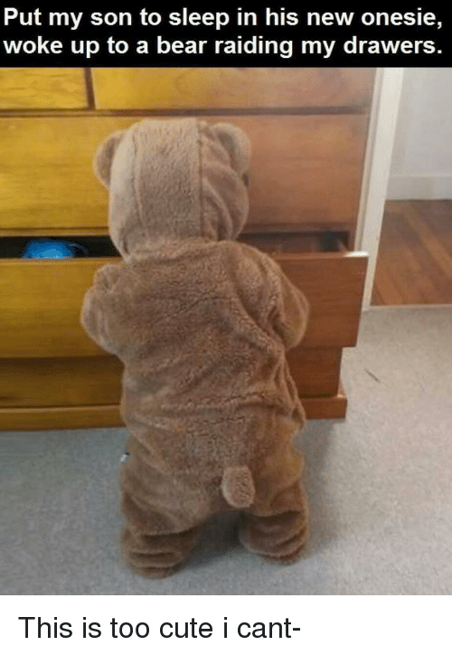 drawers: Put my son to sleep in his new onesie,  woke up to a bear raiding my drawers This is too cute i cant-