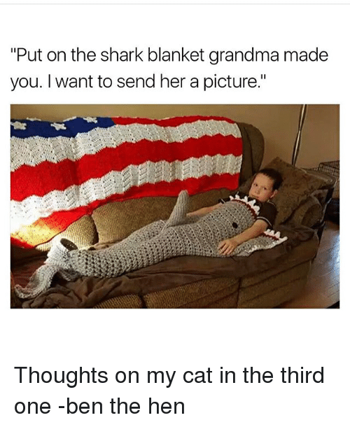 """Grandma, Memes, and Shark: """"Put on the shark blanket grandma made  you. I want to send her a picture."""" Thoughts on my cat in the third one -ben the hen"""