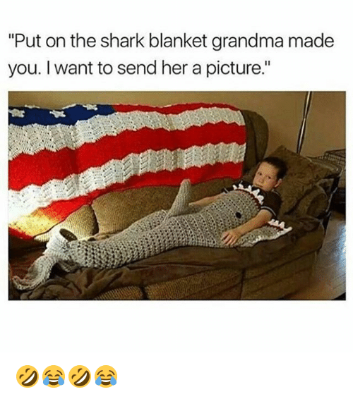 "sharking: ""Put on the shark blanket grandma made  you. I want to send her a picture."" 🤣😂🤣😂"
