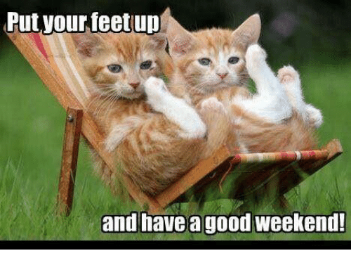 Have A Good Weekend Funny Cat Meme