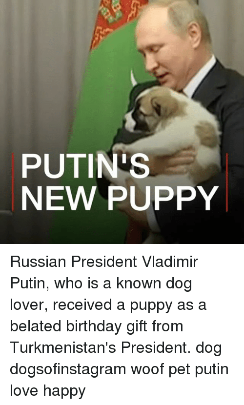 Belated Birthday: PUTIN'S  NEW PUPPY Russian President Vladimir Putin, who is a known dog lover, received a puppy as a belated birthday gift from Turkmenistan's President. dog dogsofinstagram woof pet putin love happy