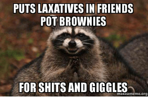 For Shits And Giggles: PUTS LAXATIVES IN FRIENDS  POT BROWNIES  FOR SHITS AND GIGGLES  makea meme org