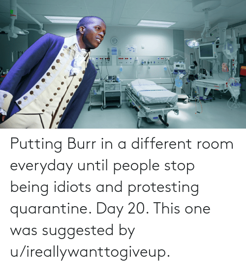 Protesting: Putting Burr in a different room everyday until people stop being idiots and protesting quarantine. Day 20. This one was suggested by u/ireallywanttogiveup.