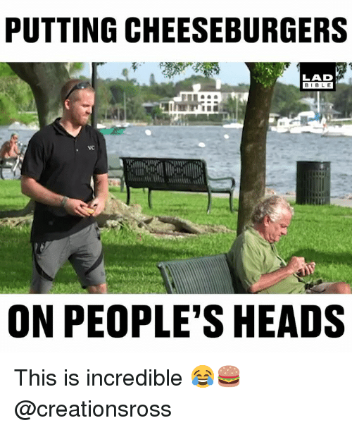 Memes, 🤖, and Lad: PUTTING CHEESEBURGERS  LAD  BIB L E  . VC  ON PEOPLE'S HEADS This is incredible 😂🍔 @creationsross