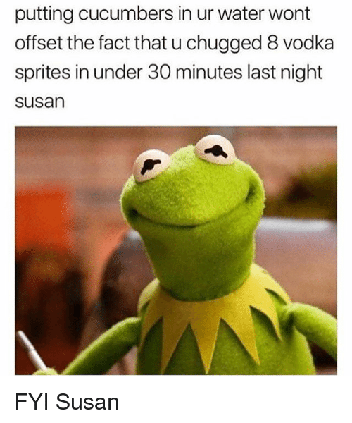 Water, Vodka, and Girl Memes: putting cucumbers in ur water wont  offset the fact that u chugged 8 vodka  sprites in under 30 minutes last night  susan FYI Susan