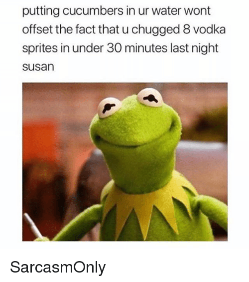 Funny, Memes, and Water: putting cucumbers in ur water wont  offset the fact that u chugged 8 vodka  sprites in under 30 minutes last night  susan SarcasmOnly