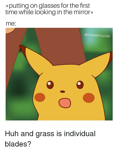 Looking In The Mirror: *putting on glasses for the first  time while looking in the mirror*  me:  @honestchuckle Huh and grass is individual blades?