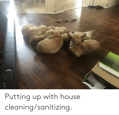 House Cleaning: Putting up with house cleaning/sanitizing.