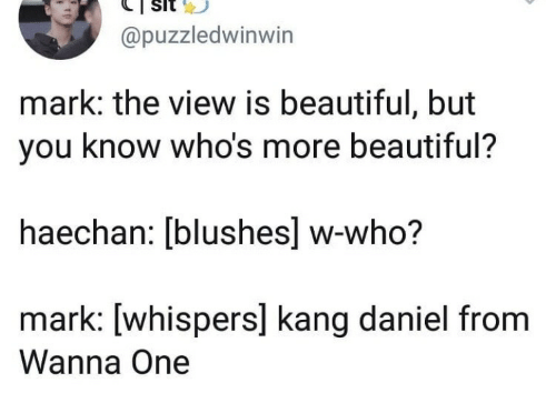 The View: @puzzledwinwin  mark: the view is beautiful, but  you know who's more beautiful?  haechan: [blushes] w-who?  mark: [whispers] kang daniel from  Wanna One