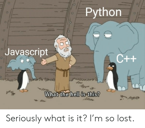 What Is It: Python  ol  Javascript  C++  What the hell is this? Seriously what is it? I'm so lost.