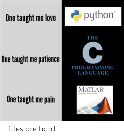 Patience: python  TM  One taught me love  THE  One taught me patience  PROGRAMMING  LANGUAGE  MATLAB  One taught me pain Titles are hard