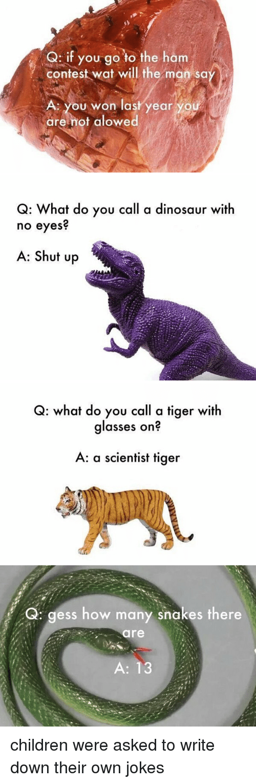 Jokes: Q: if you go to the ham  contest wat will the man sa  A. you won last year y  are not alowed   Q: What do you call a dinosaur with  no eyes  A: Shut up   Q: what do you call a tiger with  glasses on?  A: a scientist tiger   Q: gess how many snakes there  are  A: 13 children were asked to write down their own jokes