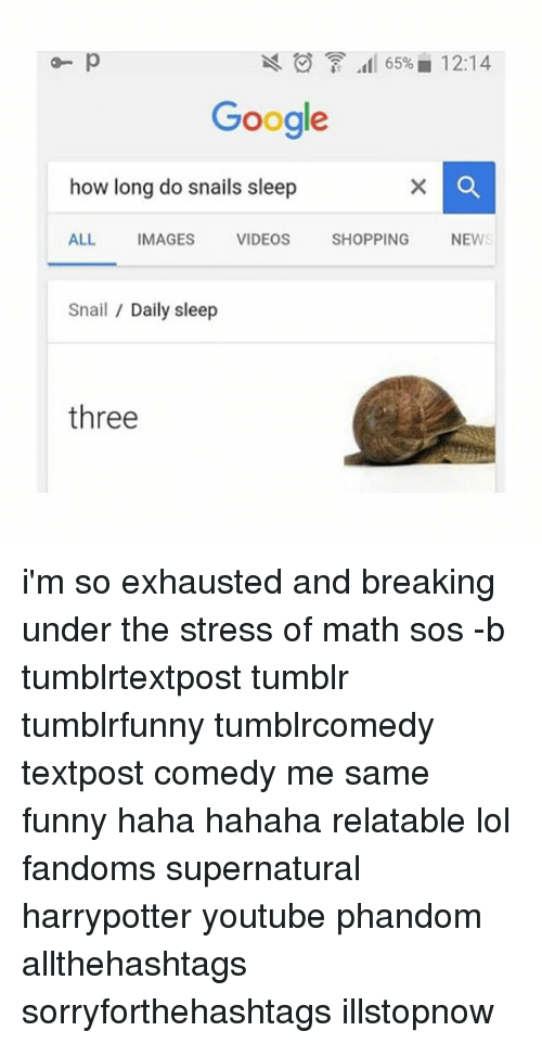 Funnyes: Q- p  65% 12:14  Google  how long do snails sleep  ALL  IMAGES  VIDEOS  SHOPPING  NEW  Snail Daily sleep  three i'm so exhausted and breaking under the stress of math sos -b tumblrtextpost tumblr tumblrfunny tumblrcomedy textpost comedy me same funny haha hahaha relatable lol fandoms supernatural harrypotter youtube phandom allthehashtags sorryforthehashtags illstopnow