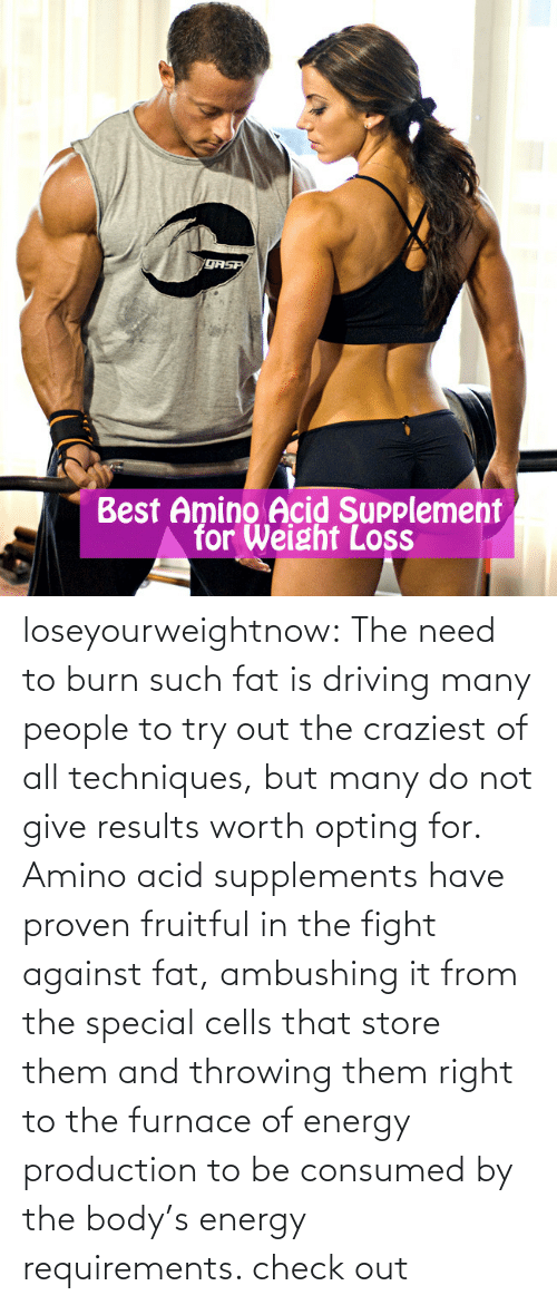 Amino: QASP  Best Amino Acid Supplement  for Weight Loss loseyourweightnow:  The need to burn such fat is driving many people to try out the craziest of all techniques, but many do not give results worth opting for. Amino acid supplements have proven fruitful in the fight against fat, ambushing it from the special cells that store them and throwing them right to the furnace of energy production to be consumed by the body's energy requirements. check out