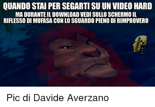Videos, Mufasa, and Video: QUANDO STAI PER SEGARTI SU UN VIDEO HARD  MADURANTE ILDOWNLOAD VEDI SULLO SCHERMOIL  RIFLESSO DI MUFASA CON LO SGUARDOPIENODIRIMPROVERO Pic di Davide Averzano