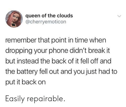 Put It Back: queen of the clouds  @cherryemoticon  remember that point in time when  dropping your phone didn't break it  but instead the back of it fell off and  the battery fell out and you just had to  put it back on Easily repairable.