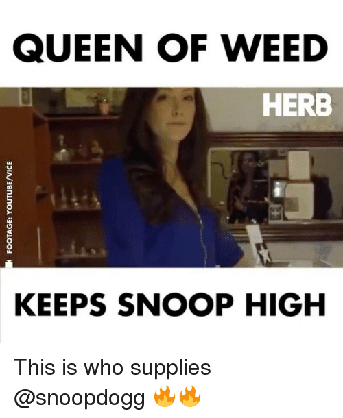snoopes: QUEEN OF WEED  HERB  KEEPS SNOOP HIGH This is who supplies @snoopdogg 🔥🔥