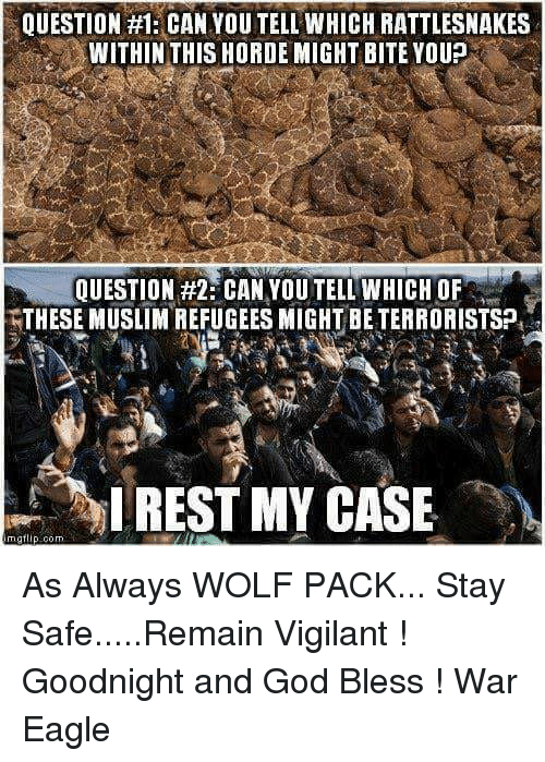vigil: QUESTION #1: CAN YOU TELL WHICH RATTLESNAKES  WITHIN THIS HORDE MIGHT BITE YOUP  QUESTION #2 CAN YOUTELL WHICH OF  THESE MUSLIMREFUGEES MIGHT BETERRORISTSP,  I REST MY CASE  rngt As Always WOLF PACK... Stay Safe.....Remain Vigilant ! Goodnight and God Bless  !                              War Eagle