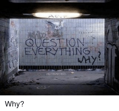 SIZZLE: QUESTION  EVERYTHING  WHY Why?