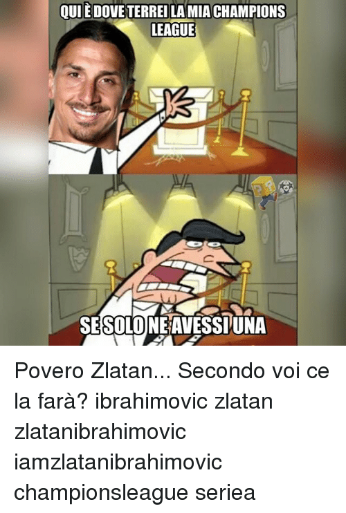 Dove, Memes, and Champions League: QUI E DOVE TERREILAMIA CHAMPIONS  LEAGUE  SESOLONEAVESSIUNA Povero Zlatan... Secondo voi ce la farà? ibrahimovic zlatan zlatanibrahimovic iamzlatanibrahimovic championsleague seriea