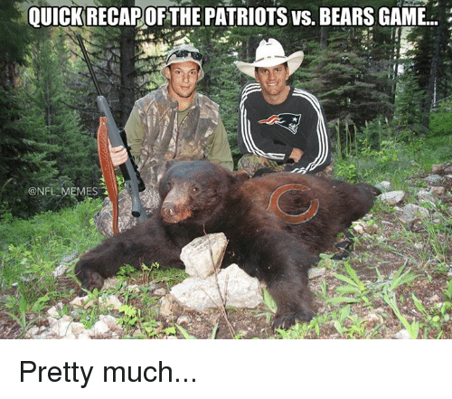 Meme, Memes, and Nfl: QUICK RECAPOFTHE PATRIOTS vs. BEARSGAME...  @NFL MEMES Pretty much...