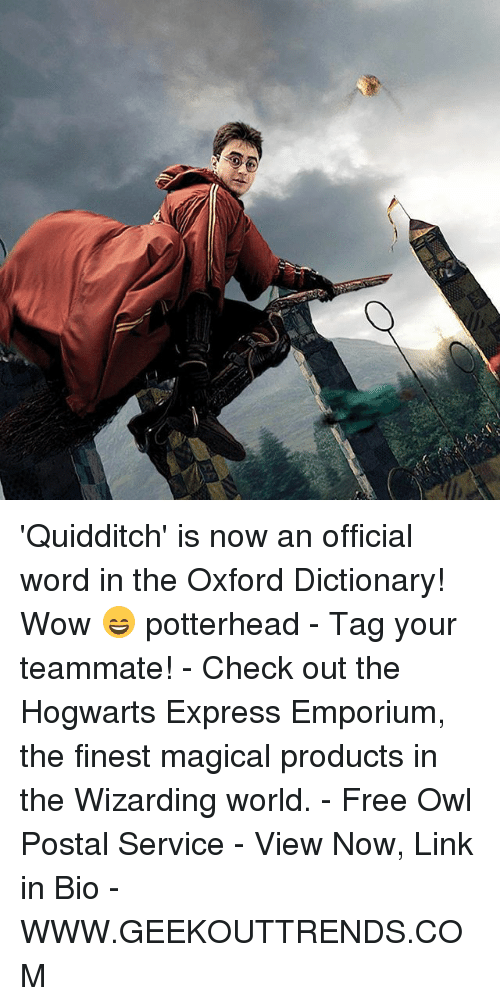 Quidditch: 'Quidditch' is now an official word in the Oxford Dictionary! Wow 😄 potterhead - Tag your teammate! - Check out the Hogwarts Express Emporium, the finest magical products in the Wizarding world. - Free Owl Postal Service - View Now, Link in Bio - WWW.GEEKOUTTRENDS.COM