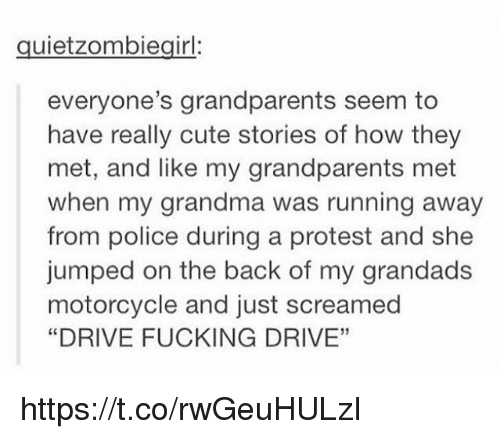 "Cute, Fucking, and Grandma: quietzombiegirl:  everyone's grandparents seem to  have really cute stories of how they  met, and like my grandparents met  when my grandma was running away  from police during a protest and she  jumped on the back of my grandads  motorcycle and just screamed  ""DRIVE FUCKING DRIVE""  05 https://t.co/rwGeuHULzI"