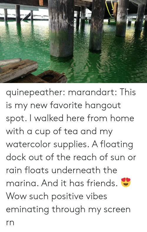 positive vibes: quinepeather: marandart: This is my new favorite hangout spot. I walked here from home with a cup of tea and my watercolor supplies. A floating dock out of the reach of sun or rain floats underneath the marina. And it has friends. 😍   Wow such positive vibes eminating through my screen rn