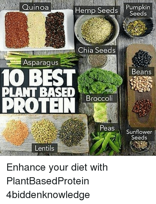 Memes, Protein, and Asparagus: Quinoa  Hemp Seeds  Pumpkin  Seeds  Chia Seeds  Asparagus  10 BEST  Beans  PLANT BASED  Broccoli  PROTEIN  Peas  Sunflower  Seeds  Lentils Enhance your diet with PlantBasedProtein 4biddenknowledge