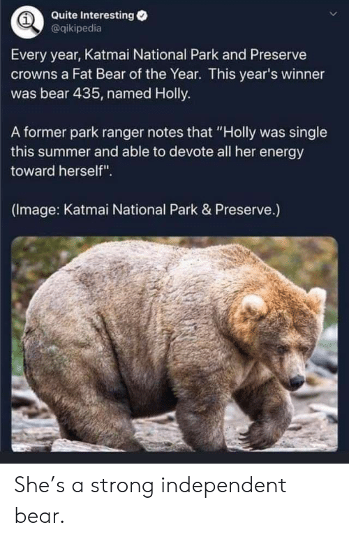 "devote: Quite Interesting  @qikipedia  Every year, Katmai National Park and Preserve  crowns a Fat Bear of the Year. This year's winner  was bear 435, named Holly.  A former park ranger notes that ""Holly was single  this summer and able to devote all her energy  toward herself"".  (Image: Katmai National Park & Preserve.) She's a strong independent bear."
