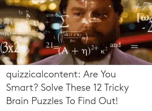 smart: quizzicalcontent:    Are You Smart? Solve These 12 Tricky Brain Puzzles To Find Out!