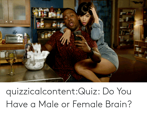 female: quizzicalcontent:Quiz: Do You Have a Male or Female Brain?
