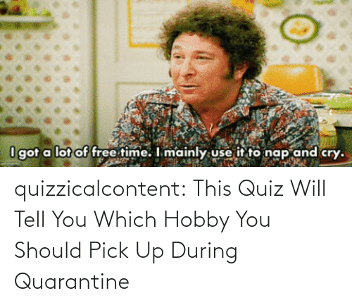 We Know: quizzicalcontent:    This Quiz Will Tell You Which Hobby You Should Pick Up During Quarantine
